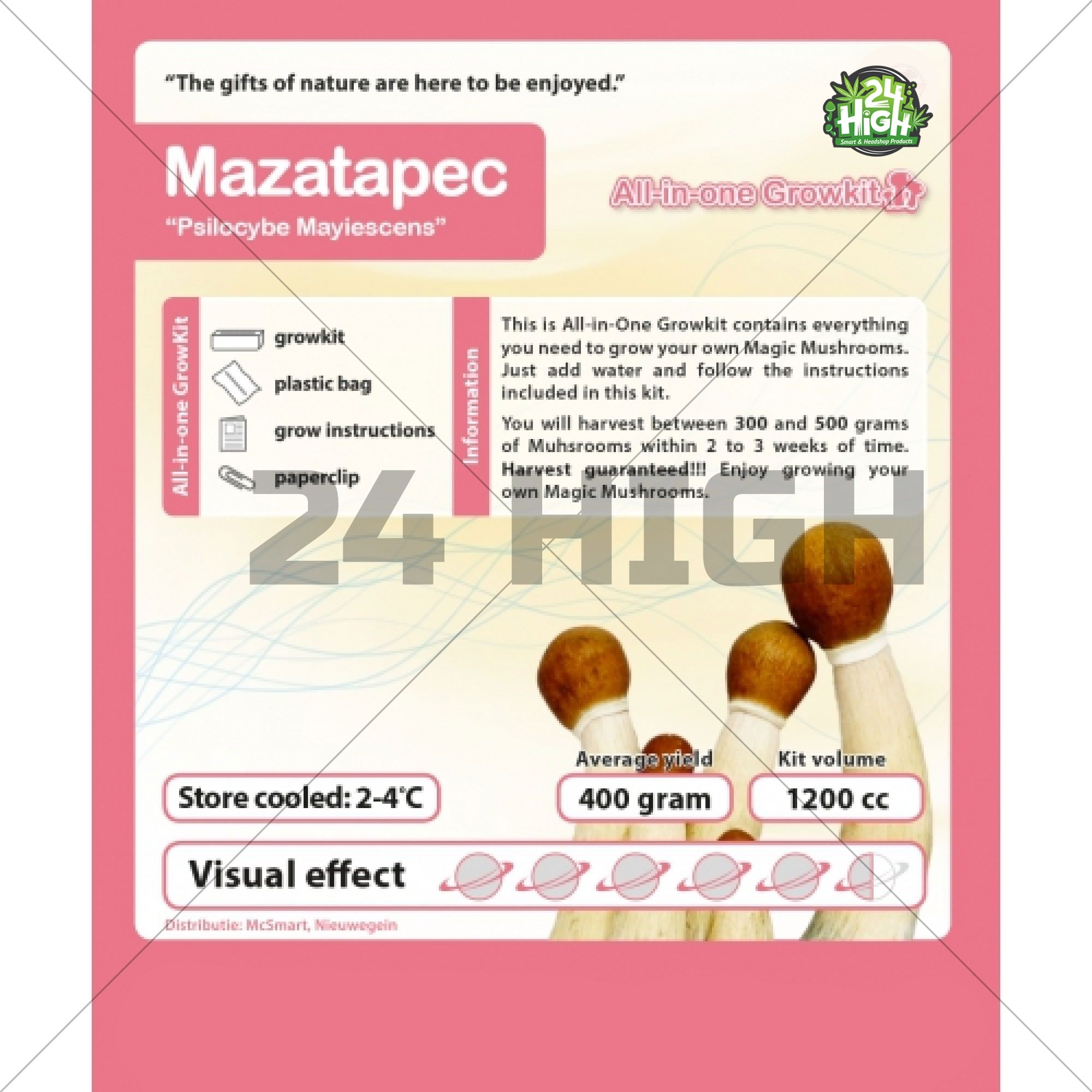 Mazatapec, Kit de Cultivo de Setas