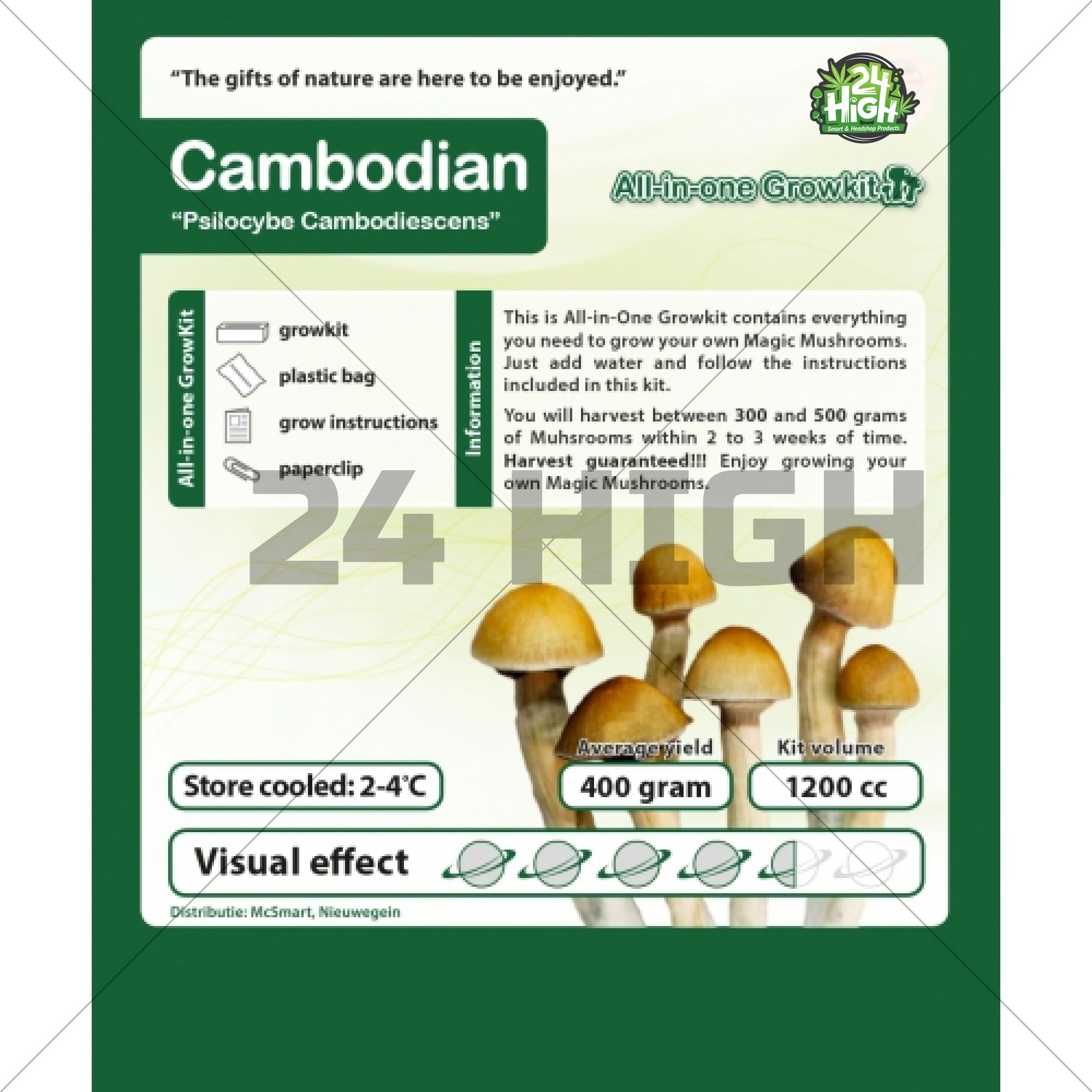 Camboya, Kit de Cultivo de Setas