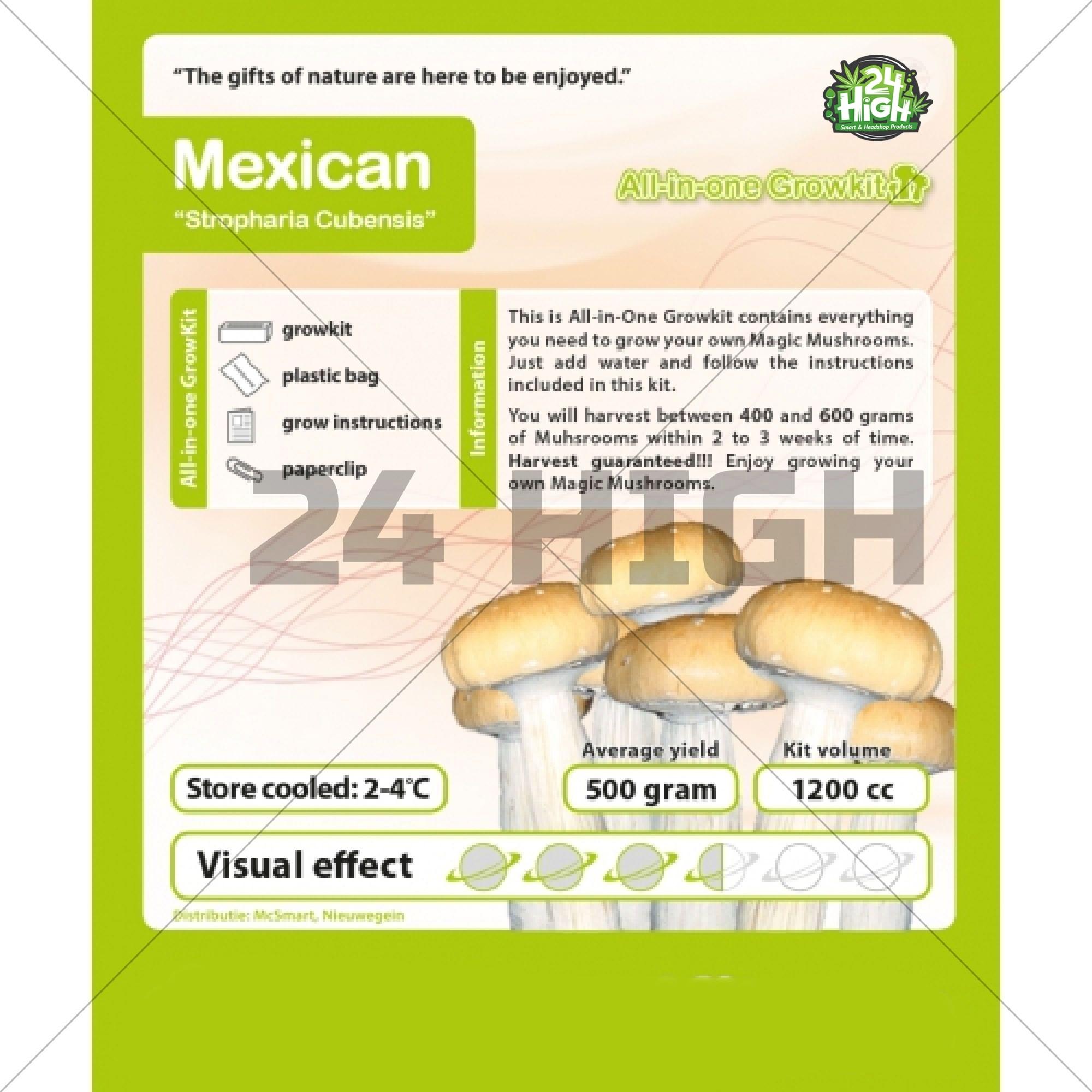 Mexicana Kit de Cultivo de Setas