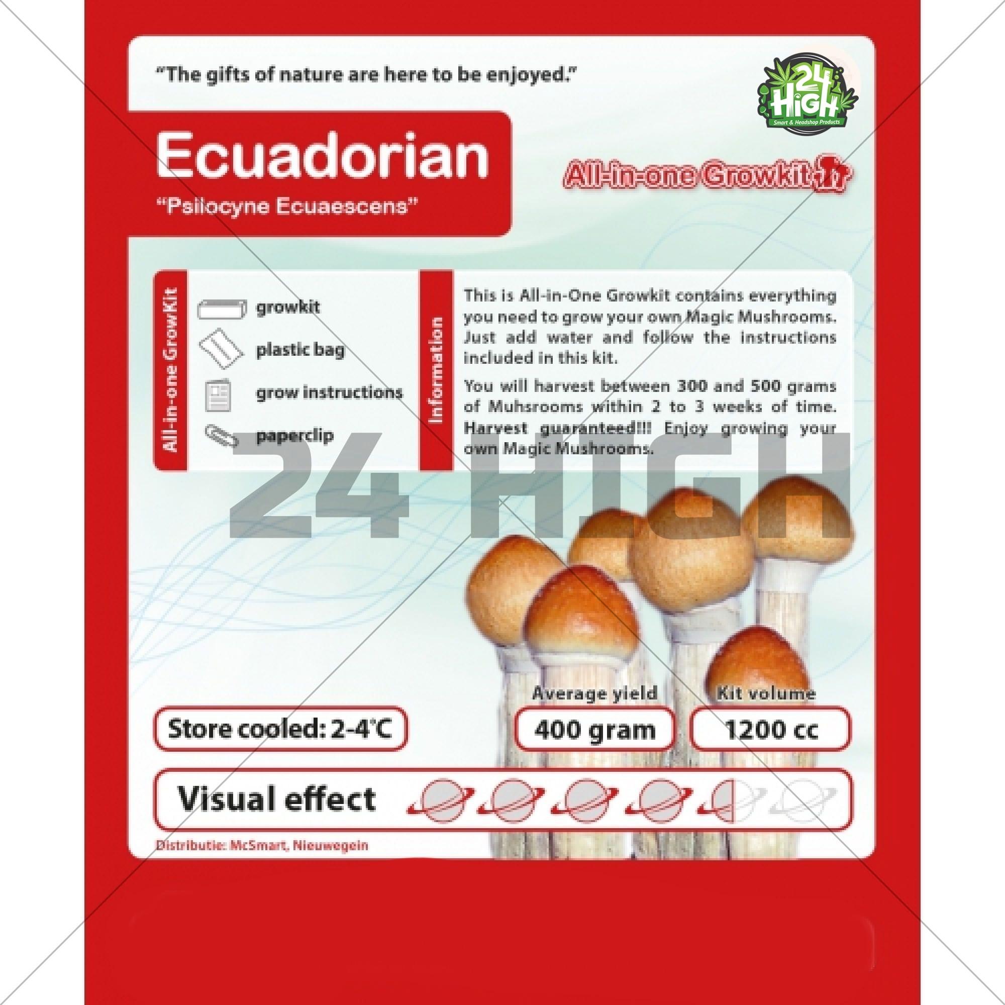 Ecuatoriano Kit de Cultivo de Setas
