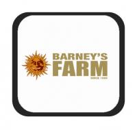 Marcas - Barney