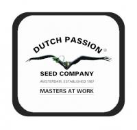 Marcas - Dutch Passion