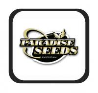 Marcas - Paradise Seeds