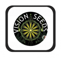 Marcas - Vision Seeds